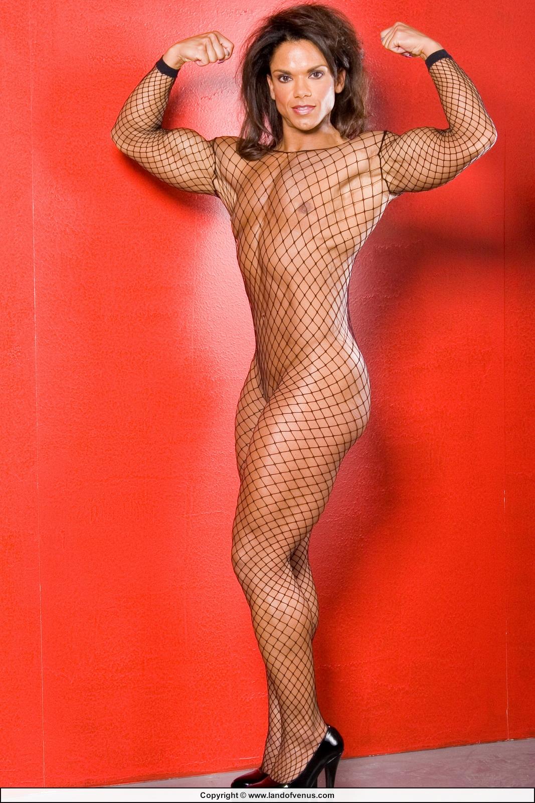 Naked Women Bodybuilders  Hot Girl Hd Wallpaper-6976