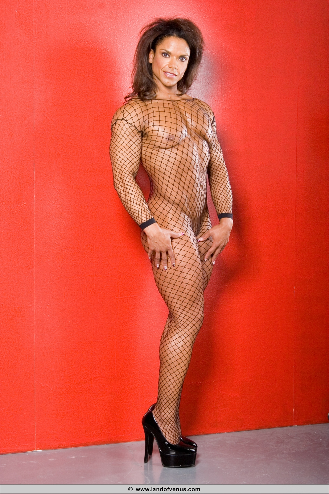 Female bodybuilder women nude